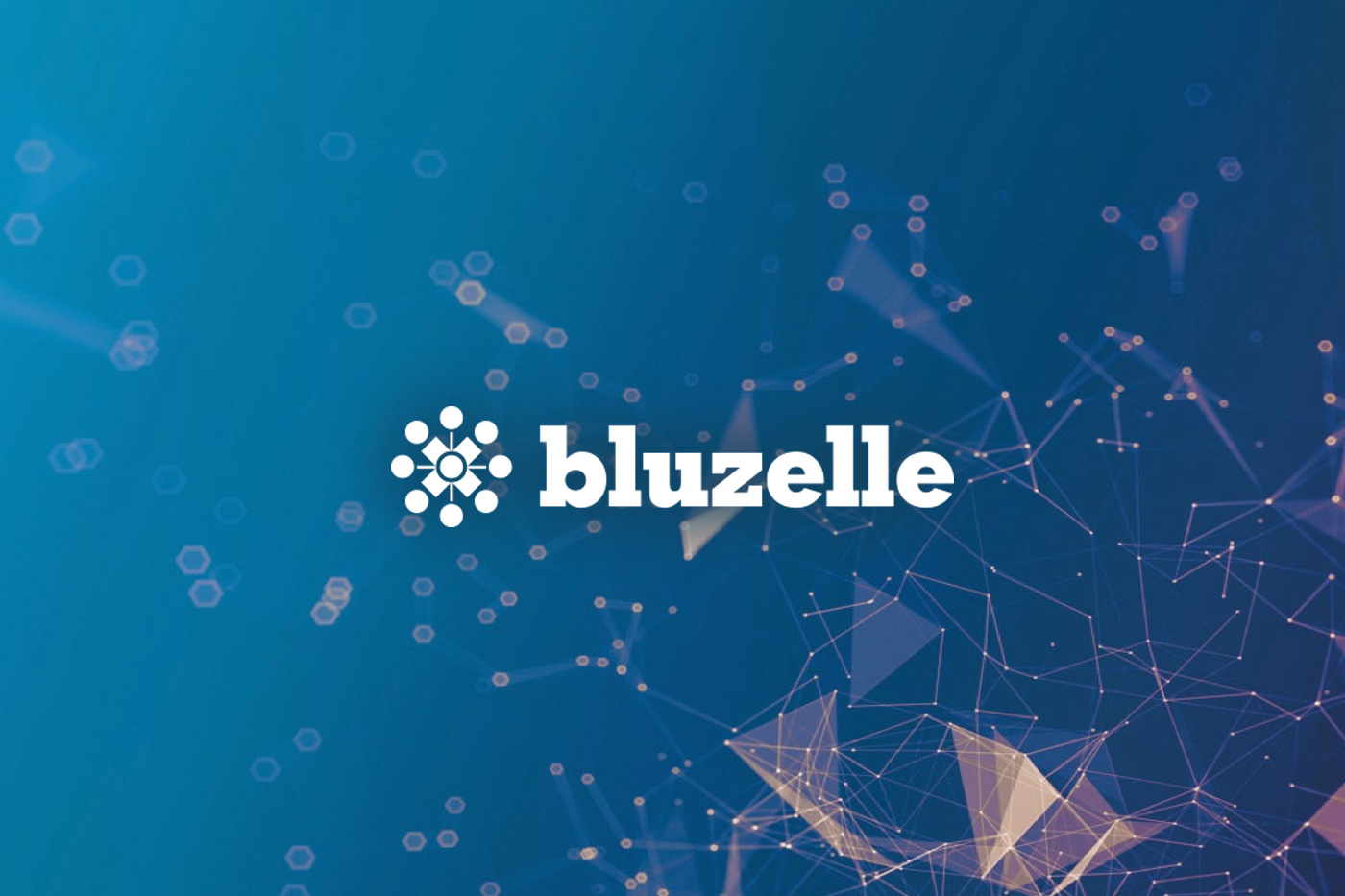 With BLUZELLE- Data Storage Has Never Been Easier