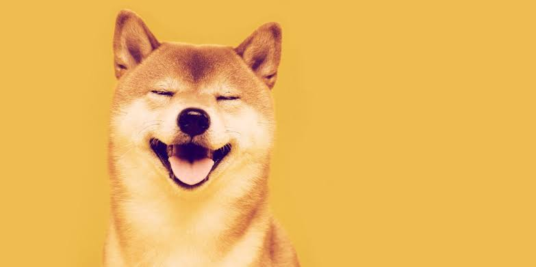 Shiba Inu Futures Trading Volume Goes Up 7700% in 7 Days
